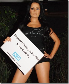 Celina Jaitley Photoshoot For PET A Forth Welfare Of Elephants Gallery
