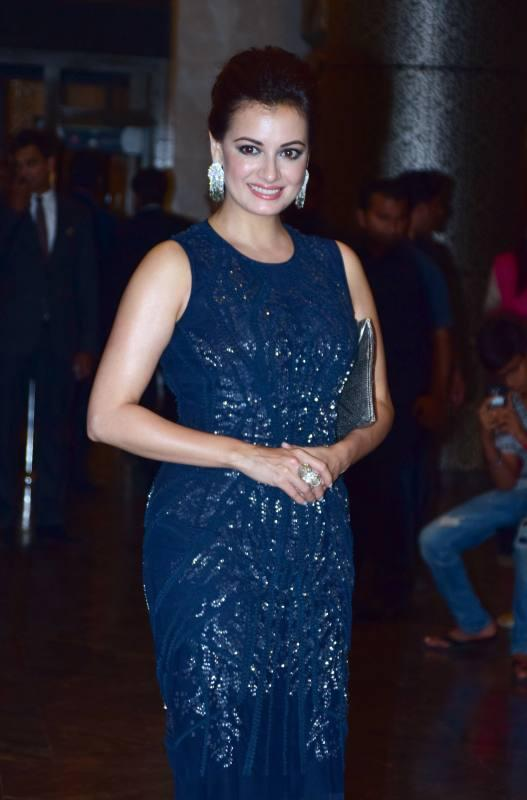 Preity Zintas Wedding Reception Photo Gallery
