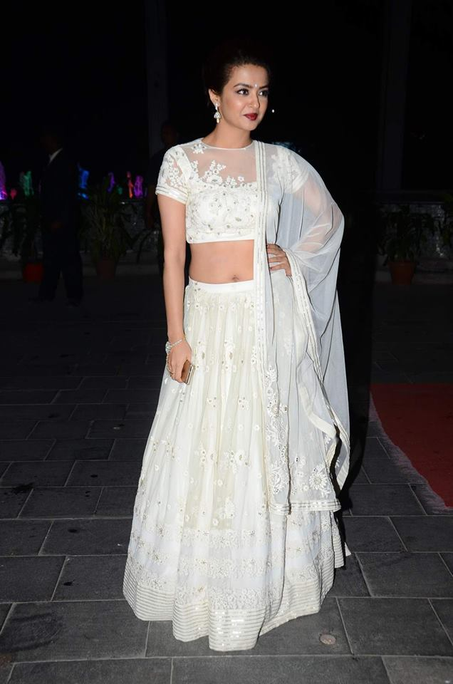 Tulsi Kumar & Hitesh Ralhans Wedding Reception Photos